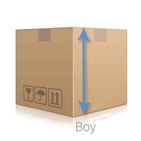 Kutu Boy